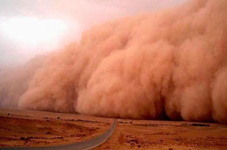 POLVOS DEL SAHARA / COLUMNA PARADIGMAS
